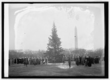 The First Community Christmas Tree Lit On December 24 1923 In Middle Of Ellipse Outside White House