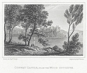 Conway Castle: from the wood opposite