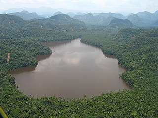 Cordillera Azul National Park