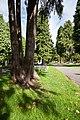 Cottingham IMG 4894.CR2 - panoramio.jpg