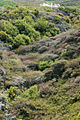 Craters of the Moon TAUPO-1165.jpg