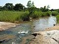 Crossing the Sabie river (393917234).jpg