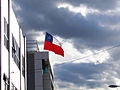 Curico, chilean flag (9020283169).jpg