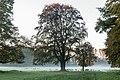 Dülmen, Wildpark -- 2014 -- 3841.jpg