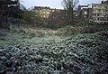 Daniel Desmedt. - hiver 2005.jpg