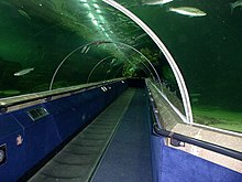 Acrylic tunnel at Deep Sea World. The tunnel contains a moving walkway and a static walkway. Some fish can be seen swimming in the aquarium