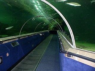 aquarium in Fife, Scotland