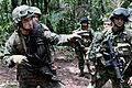 Defense.gov News Photo 100802-M-9093S-030 - U.S. Marine Corps Cpl. Blaho instructs his squad on where to cross a river while training with Colombian marines on jungle warfare in Colombia on.jpg