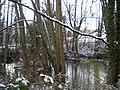 Der Teich des Schloss Hagen heute.JPG