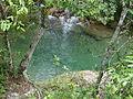 Detalhe das aguas verdes em Corrego na Serra da Canastra.JPG