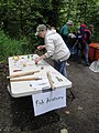 Detroit Ranger District-Free Fishing Day-129 (34047509084).jpg
