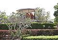 Dhammagiri Forest Hermitage, Buddhist Monastery, Brisbane, Australia www.dhammagiri.org.au 116.jpg