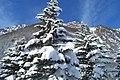 Dicembre 08 - panoramio.jpg