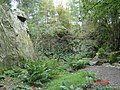 Disused quarry in Tollohill Wood - geograph.org.uk - 254289.jpg