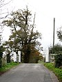 Disused railway line - level crossing - geograph.org.uk - 607265.jpg