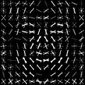 Dlib Learned-HOG-Detector.jpg
