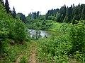 Dobryanskiy r-n, Permskiy kray, Russia - panoramio (218).jpg
