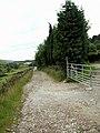 Doctor's Gate Bridleway - geograph.org.uk - 475288.jpg