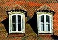 Dormer - Flickr - Stiller Beobachter.jpg