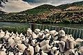 Douro, Vinha e Vasilhas.jpg