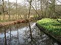 Dr. Jac. P. Thijssepark - Amstelveen (5558240879).jpg