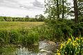 Drents Landschap Deurze1-3.jpg