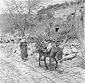 Druzische vrouw met een met hout beladen ezel, Bestanddeelnr 255-0137.jpg