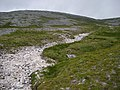 Dry River bed down Arkle - geograph.org.uk - 71692.jpg