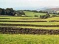 Dry stone walls, Steeton Moor - geograph.org.uk - 57331.jpg