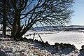 Drystane Dykes near Rottal - geograph.org.uk - 1744747.jpg