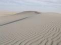 DuneBlanche.jpg