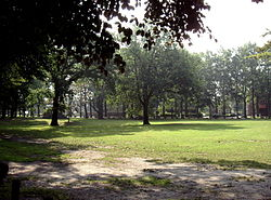 meaning of village green