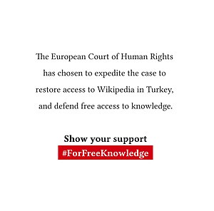ECHR filing regarding Turkey - ForFreeKnowledge graphic.jpg