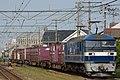 EF210-302 Niwase Station 20140525.jpg