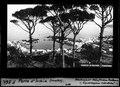 ETH-BIB-Porto d'Ischia (Krater)-Dia 247-F-00561.tif