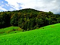 Early Autumn In Southwest Germany - panoramio.jpg