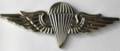Egyptian Parachutist Badge.PNG