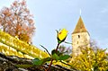 Einsiedlerhaus - Gügeliturm - Rosengarten 2012-11-04 15-09-42.JPG