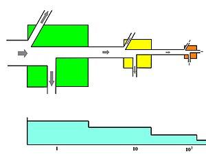 Energy flow (ecology) - Image: Energy Flow Transformity