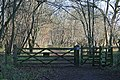 Entrance to Chiphouse Wood - geograph.org.uk - 1099787.jpg