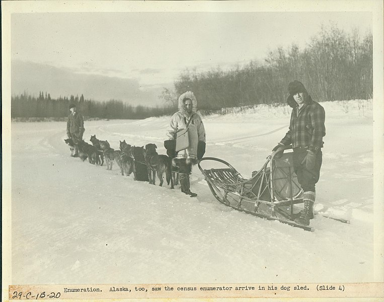 File:Enumeration, Alaska Too Saw the Census Enumerator Arrive in His Dog Sled.jpg