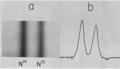 Erinevate N-isotoopidega DNA-d on erineva tihedusega. Joonisel näidatud DNA-de koondumine erinevatesse tasakaalulistesse punktidesse.png
