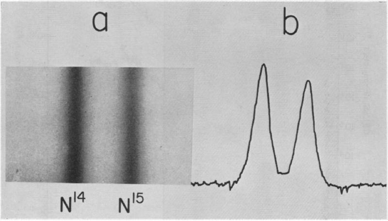 File:Erinevate N-isotoopidega DNA-d on erineva tihedusega. Joonisel näidatud DNA-de koondumine erinevatesse tasakaalulistesse punktidesse.png