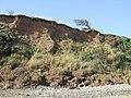 Eroding cliffs - geograph.org.uk - 2623922.jpg