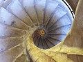 Escalera del Campanario de la Santa e Insigne Catedral Magistral de Alcala de Henares (19582663143).jpg