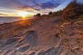 Estrecho de Magallanes sunset.jpg