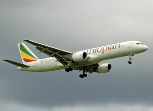 Ethiopian Airlines Boeing 757-200 ET-AKF FCO 2004-11-23.png