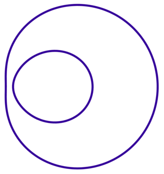 Cartesian oval - Example of Cartesian ovals.