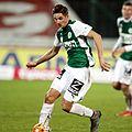 FC Admira Wacker vs. SV Mattersburg 2015-12-12 (129).jpg