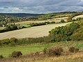 Farmland, Hughenden - geograph.org.uk - 1023091.jpg
